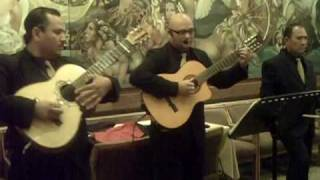 Jacarandosa - Trio Premier