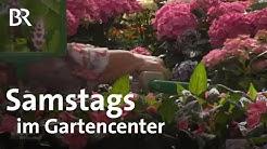 Hobbygärtner und aktuelle Trends: samstags im Gartencenter | Schwaben & Altbayern | BR
