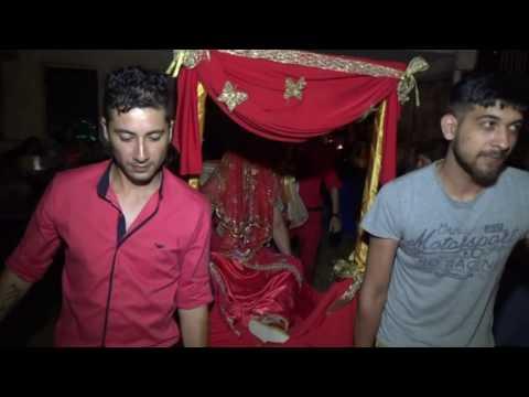 AYNUR ve RIKO BUHOVCI  DVD 4 VIDEO BEBCO VARBICA
