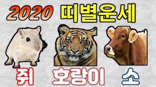 [띠별운세] 신년(경자년)? 쥐띠 호랑이띠(범띠) 소띠 운세는?