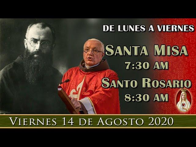 Misa y Rosario en Vivo, Viernes 14 de agosto , San Maximiliano Kolbe, por tus intenciones.