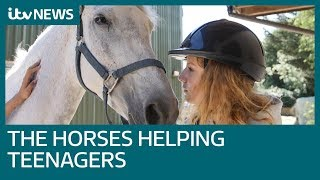 Equine therapy: How horses are helping teens' mental health | ITV News