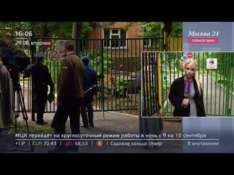 Осы покусали 19 детей на площадке детского сада на Ереванской улице