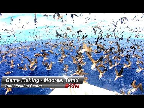 Tahiti Fishing Moorea