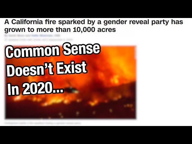 Common Sense Doesn't Exist In 2020