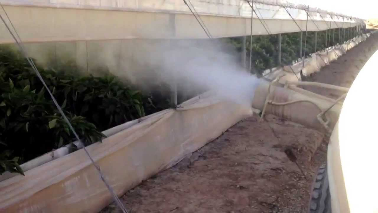 fumigacion en invernaderos