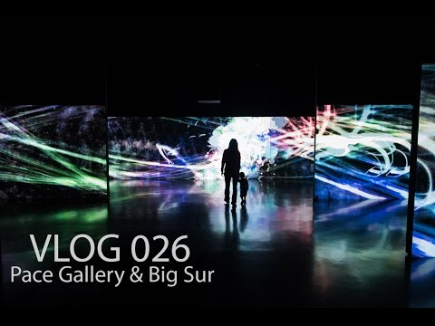 VLOG 026 : Pace Gallery & Big Sur