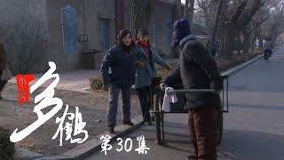 小姨多鹤 30 | Auntie Duohe 30 (主演:孙俪 姜武 闫学晶)
