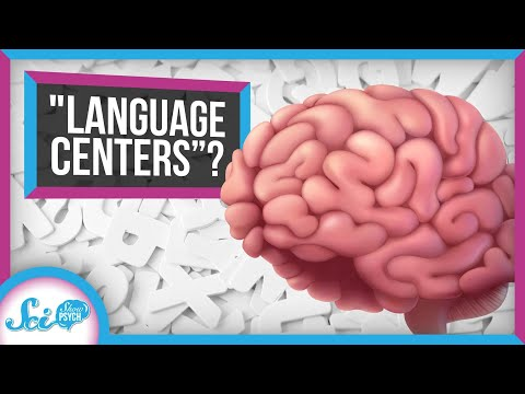 """What We Often Get Wrong About the Brain's """"Language Centers"""""""