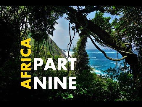 GARDEN ROUTE ADVENTURES! Knysna, Tsitsikamma NP - AFRICA VLOG PART 9