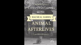 Animal Afterlives