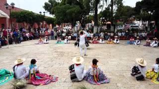 Jarabe Mixteco 2015