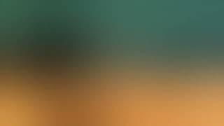 Смотреть клип Dj Dark X Dj Nil Ft.Zara - Yaman