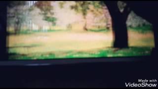 LPS:Сериал ~Волчье сердце~ 1 серия ( Продолжение после 5 лайков)