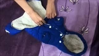 ОБЗОР КОМБИНЕЗОНА ДЛЯ СОБАКИ ТОЙ ТЕРЬЕР С ALIEXPRESS  Зимняя одежда для собак