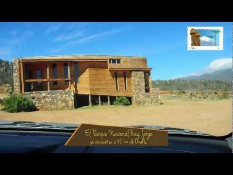 Parque Nacional  Fray Jorge - Chile 365 - turismo en Chile