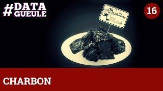 Charbon : le fossile qui a de beaux restes #DATAGUEULE 16