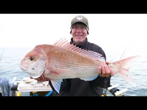 Fishing WINTER SNAPPER  They Went Crazy Video