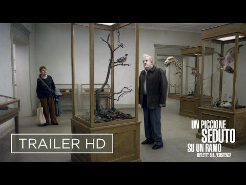 Un piccione seduto su un ramo riflette sull'esistenza (2014): altro da aggiungere? 1