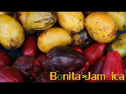 Organic Foods & Fruits Jamaica