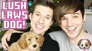 MATT GETS NICK A PUPPY!!!
