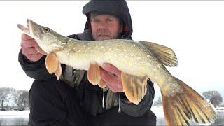 ЗИМНИЙ СПИННИНГ МОСКВА РЕКА Рыбалка зимой на спиннинг джиг ЩУКА СУДАК ЛЕЩЬ НА ДЖИГ
