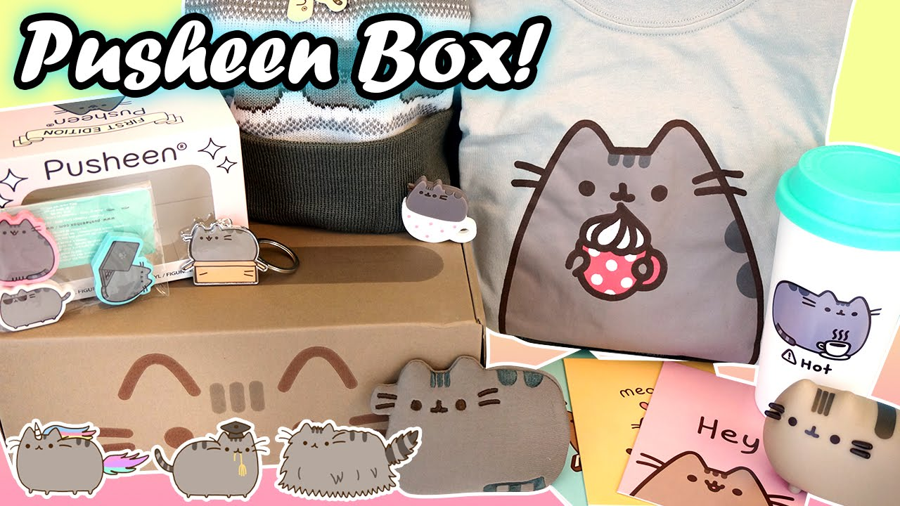 Pusheen Cat Subscription Box   Packed With Official Kawaii Merch!!   YouTube