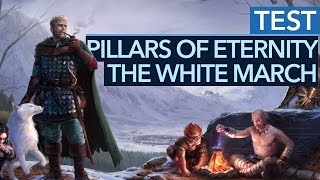 Pillars of Eternity: The White March - Part Two - Test-Video zum Addon-Finale