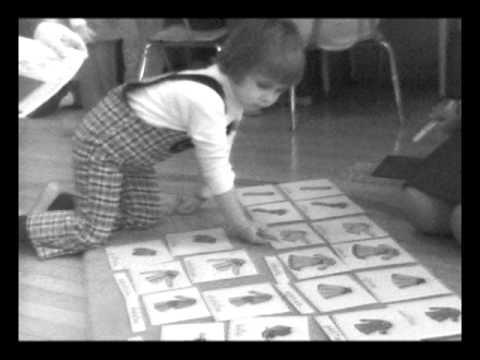 Chicago Montessori 7