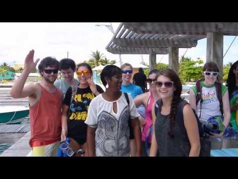 Ocean Motion Laughingbird Caye Placencia- Belize