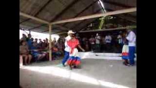 Guateque campesino - 46 Jornadas cucalambeanas en Cuba