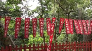 丸山稲荷神社は鶴岡八幡宮の本殿の近くにあります 鎌倉初代将軍源頼朝ゆ...