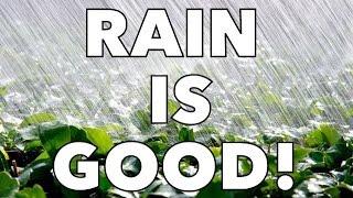 Is your Vegetable Garden Waterlogged?