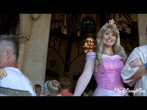 Beautiful Aurora Meet & Greet | Cinderella's Royal Table Dining Experience