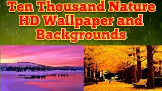 Ten thousand Nature wallpaper is free HD wallpaper and Backgrounds screenshot 1