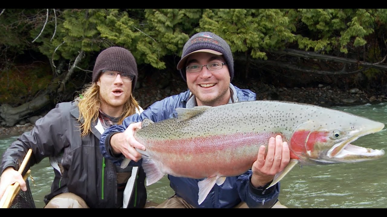 Biggest Steelhead Oregon