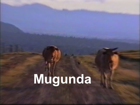 Mugunda (Nyeri - Kenya, 1991)