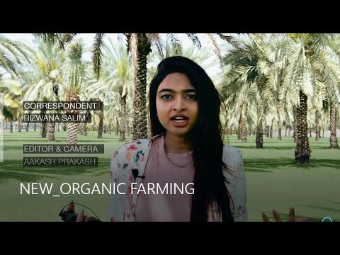 NEW ORGANIC FARMING - Desert Blooms in Dubai