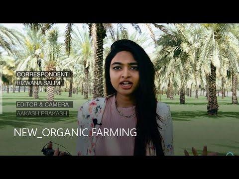 NEW ORGANIC FARMING - Desert Blooms in Dubai