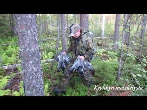 Metsästys | Jakt | Hunting