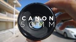 DAS BILLIGE WUNDER-OBJEKTIV   Canon 50mm 1.8