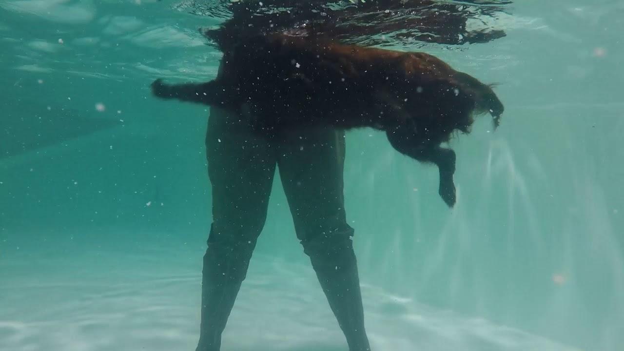 To Swim Or Not To Swim
