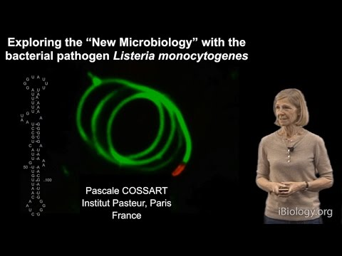 "Pascale Cossart (Institut Pasteur) Part 2: Exploring ""New Microbiology"" with Listeria monocytogenes"