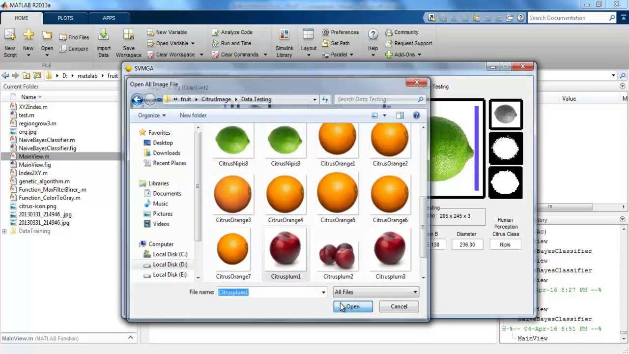 Fruit Recognition matlab projects