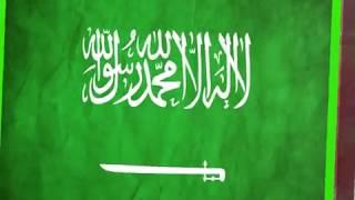 Saudi Arabia Flag Green Screen Effects -Saudi Arabia Flag Animation 3D Effects Free Download - no 81