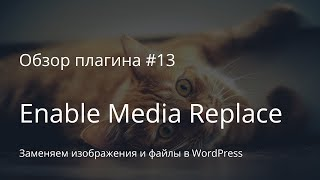 Обзор плагина #13. Enable Media Replace. Заменяем изображения и файлы в WordPress