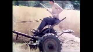 PRL 1984 Żniwa Bizon Gigant. Władza ludowa walczy o żywność