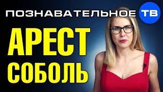 Когда посадят Любовь Соболь? (Познавательное ТВ, Артём Войтенков)