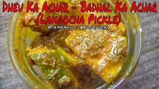 dheu ka achar badhal ka achar lakoocha pickle monkey fruit pickle traditional punjabi recipe