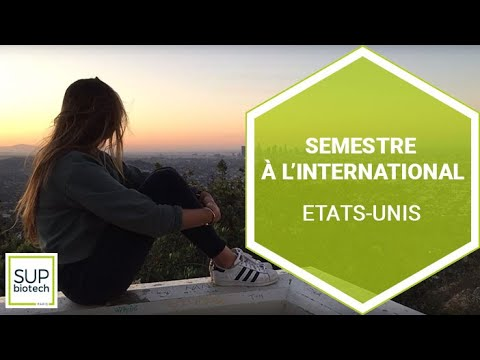 Semestre à l'International – Etats-Unis